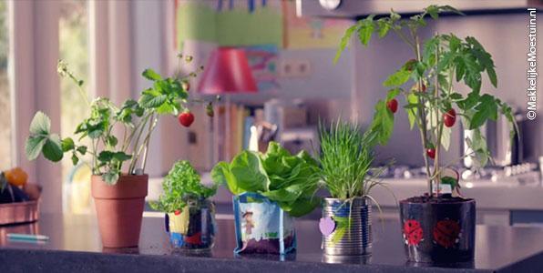 De plantjes van het reclamefilmpje van AH