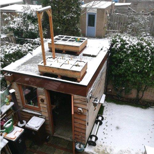 Makkelijke Moestuinbakken op het dak van een schuurtje