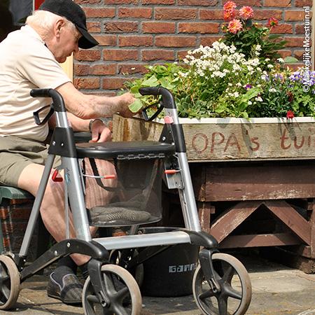 Opa inspecteert zijn plantjes