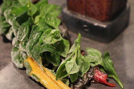 Groene smoothies van bevroren bladgroen uit de moestuin