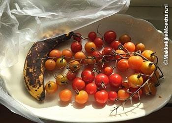Rijpende tomaatjes op de vensterbank