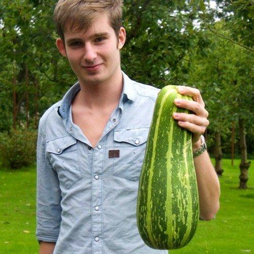 Enorme courgette, barstensvol zaden. Die weerhoudt de plant om meer vruchten aan te maken