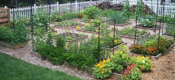 Voorbeeld grote Square Foot Garden tuin