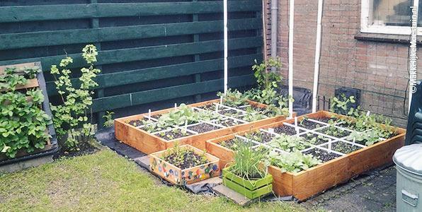 De moestuinbakken van Sven en Maaike en de verticale aardbei-tuin