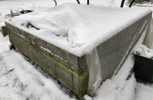 Na een flinke sneeuwstorm is de lap half weggewaaid en geeft die nog weinig bescherming.