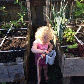 moestuinliefde-genen-tuinslang___medialibrary_original_292_292