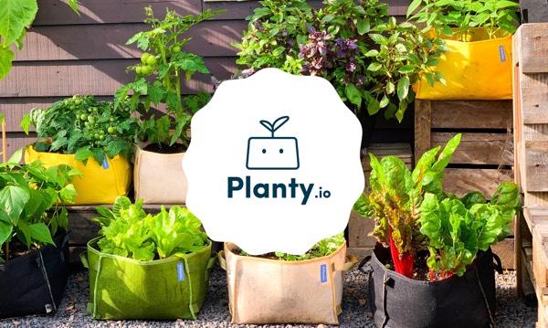 Planty: een kleine, verzendbare versie van de Makkelijke Moestuin