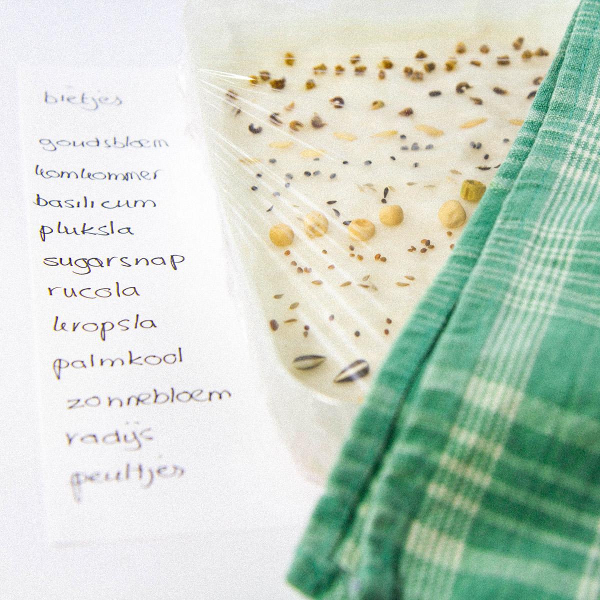 Doe een kiemtest om te checken of je oude zaden nog goed zijn.
